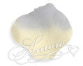 Blue Angel  Silk Rose Petals Wedding 200