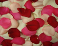 Valentine Mix Fresh Rose Petals Wedding 4000