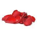 Red Fresh Rose Petals Wedding 500