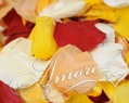 Candy Corn Freeze Dried Rose Petals Wedding 5lb