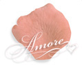 Apricot Light Terracotta Silk Rose Petals Wedding 2000