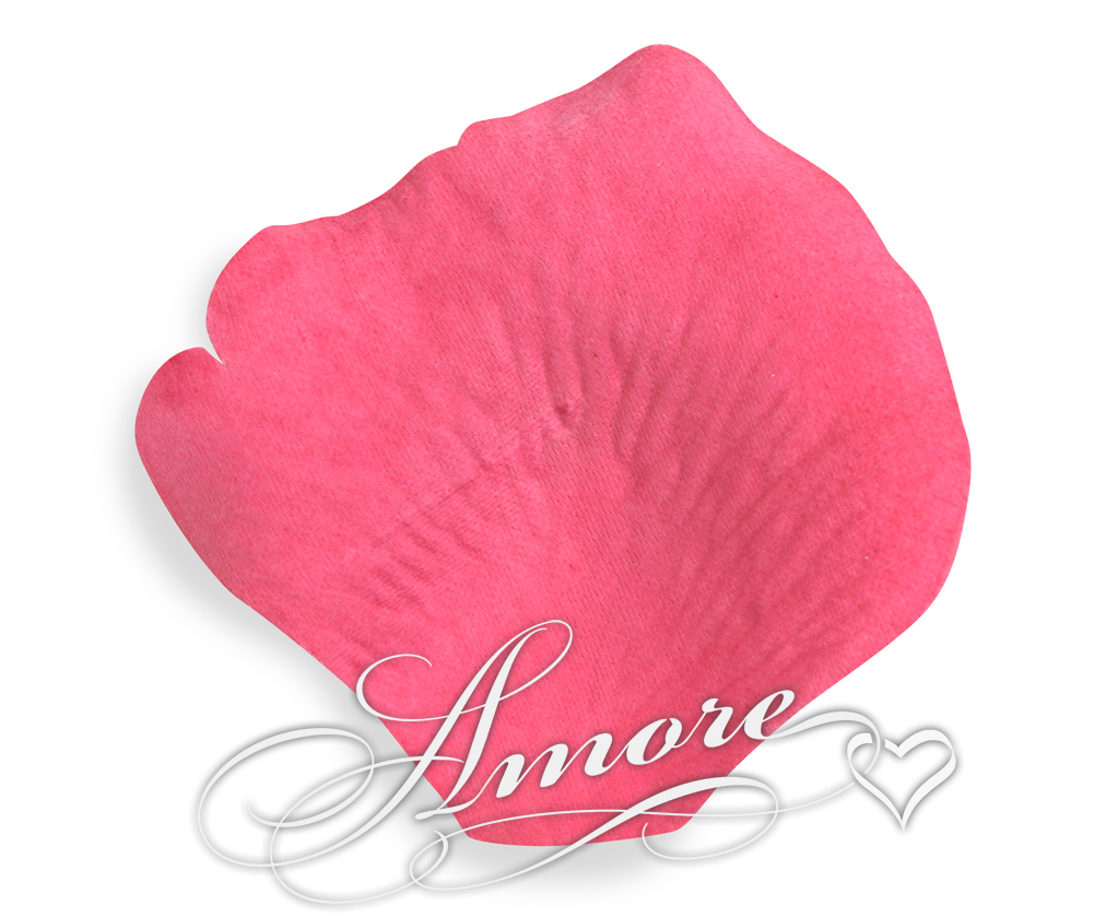 Watermelon Fuchsia Silk Rose Petals Wedding 2000